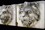 7721 lions