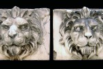 7721s lions